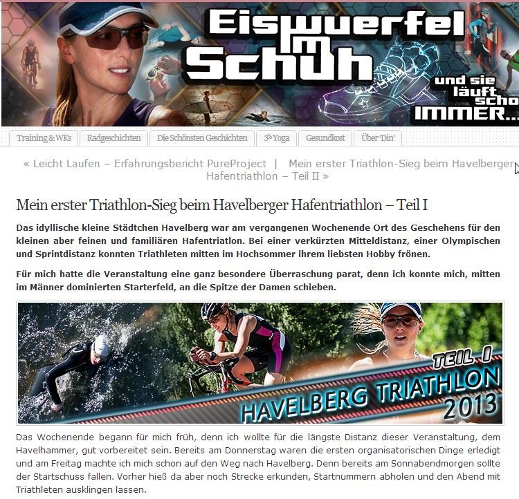 """Bericht auf """"eiswürfelimschuh"""""""